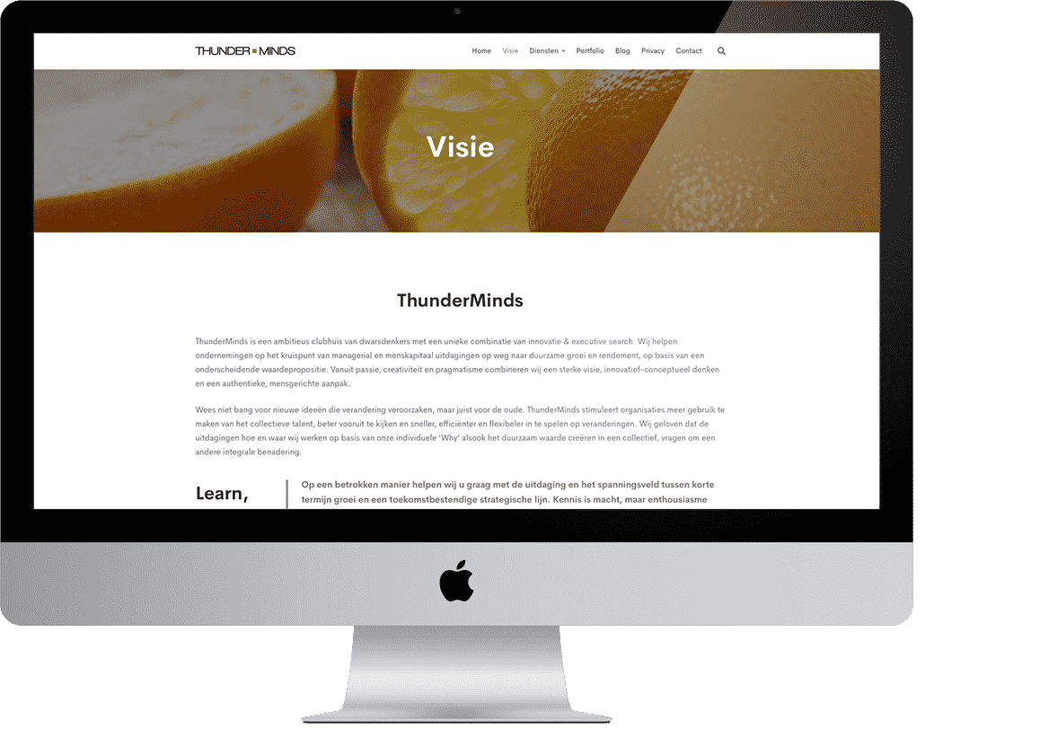 project-thunderminds-visie